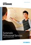 Systematic Professional Services